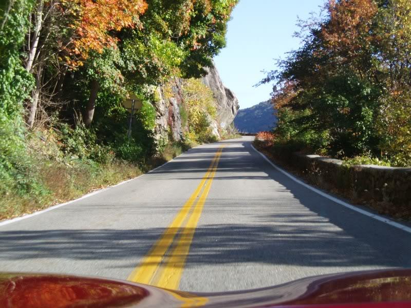 Autumn through Clean Windshield